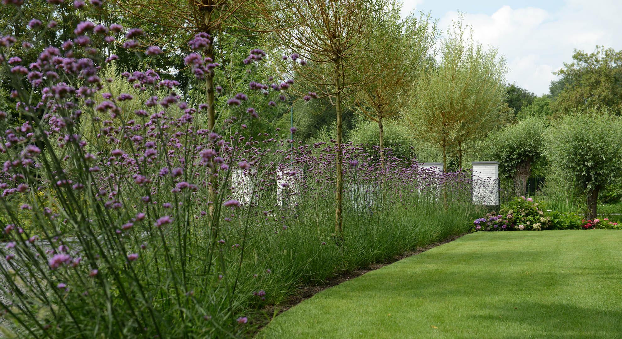 Landelijke tuin bij modern landhuis   Rodenburg Tuinen