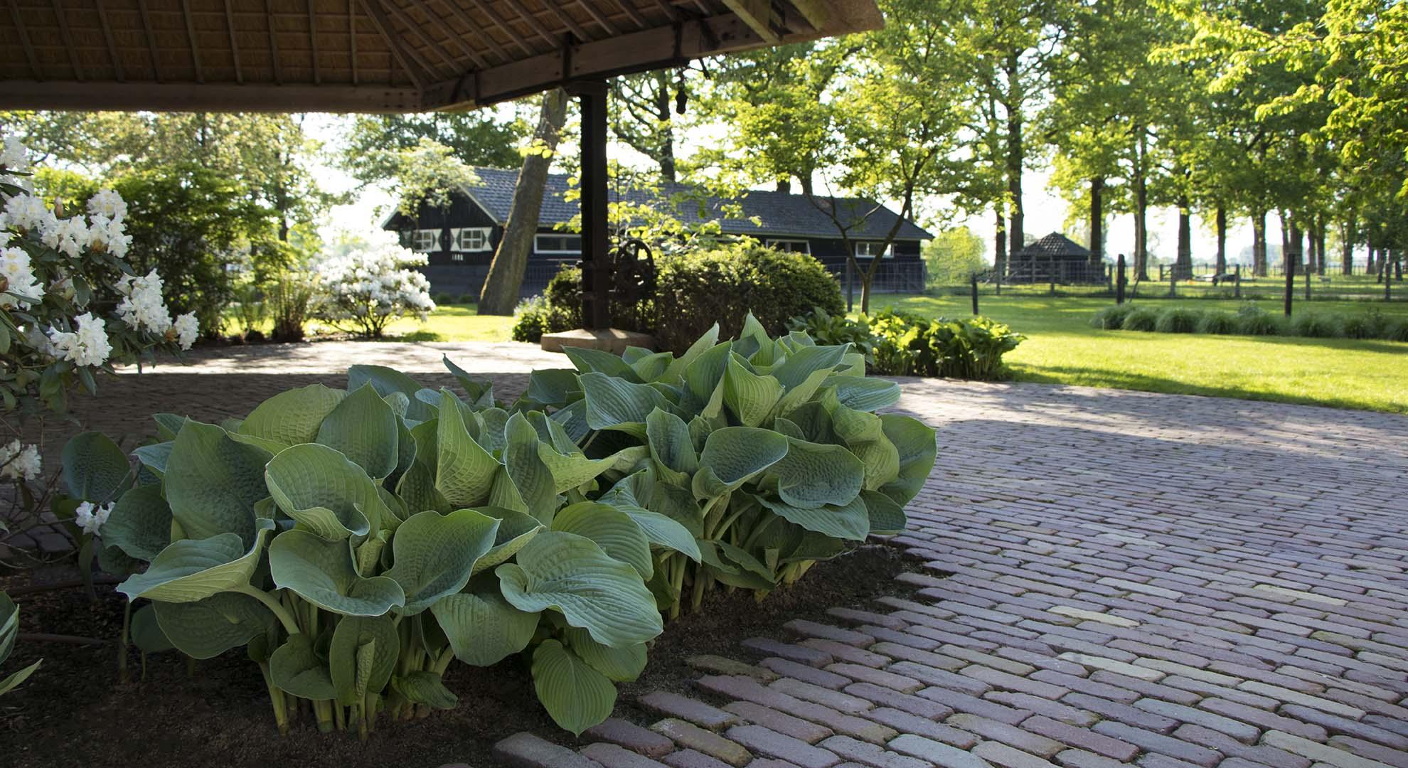 Boerderijtuin bij landgoed Woerden - Foto 2