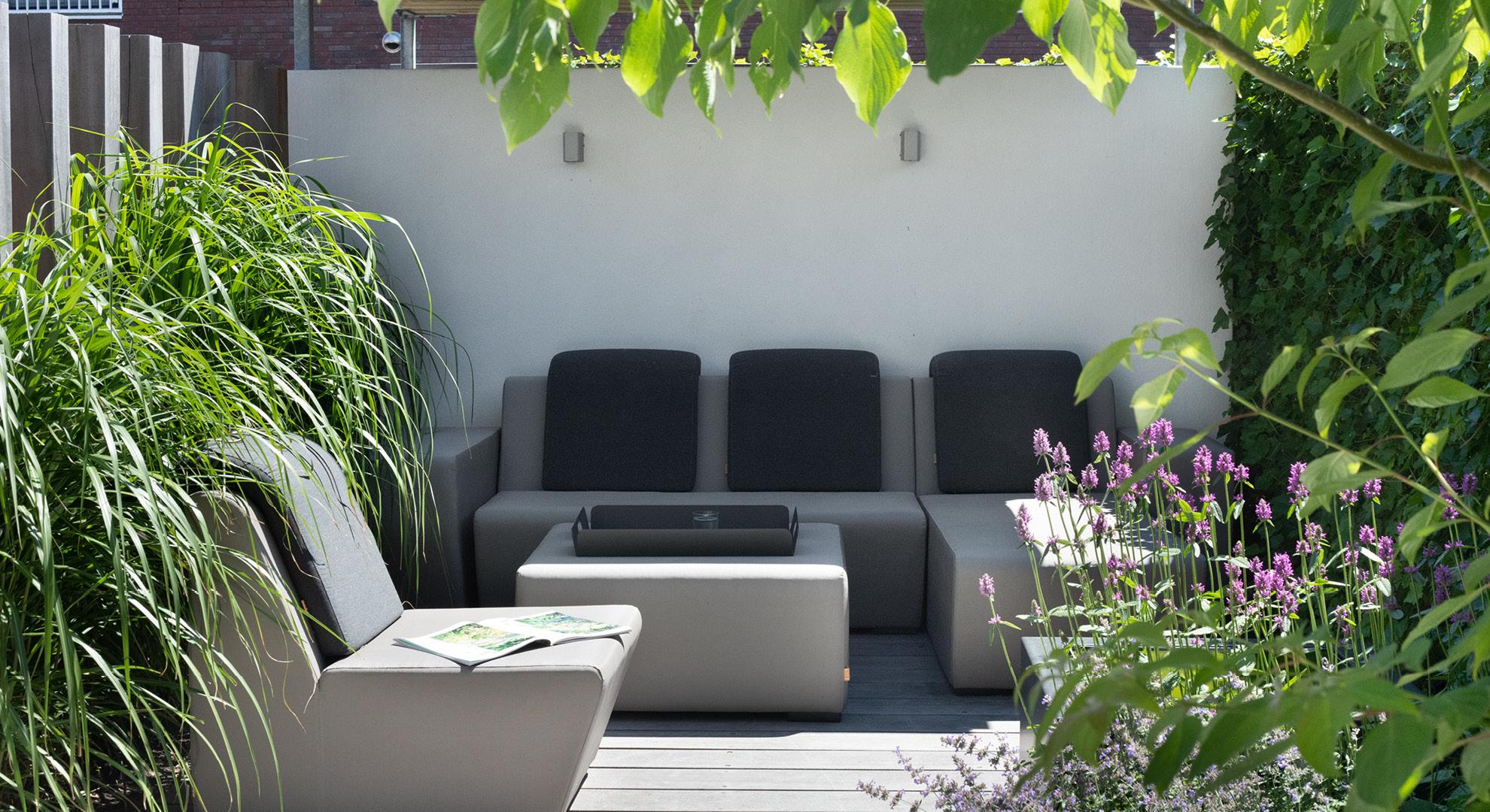 Compacte moderne tuin  - Foto 5