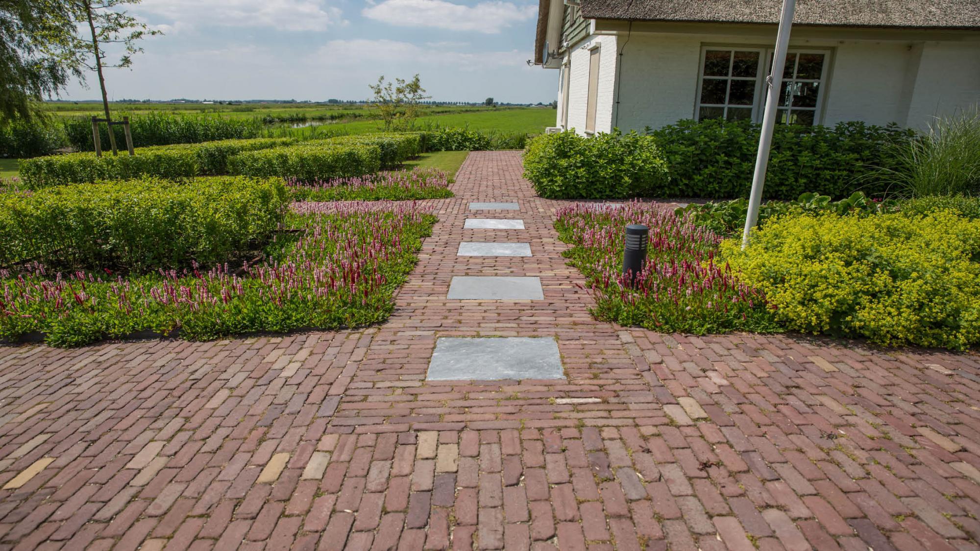 Landelijke tuin in de polder - Foto 10