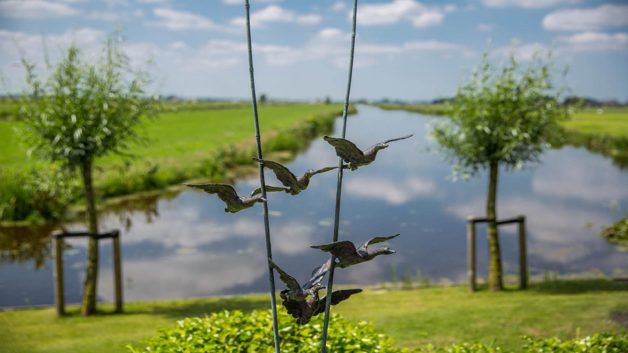Landelijke tuin in de polder - Foto 9
