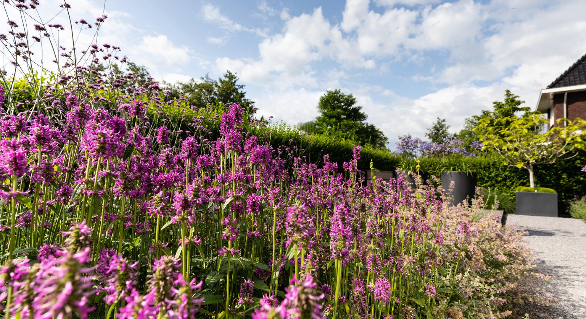 Moderne tuin met spiegelvijver en buitenhaard - Foto 4