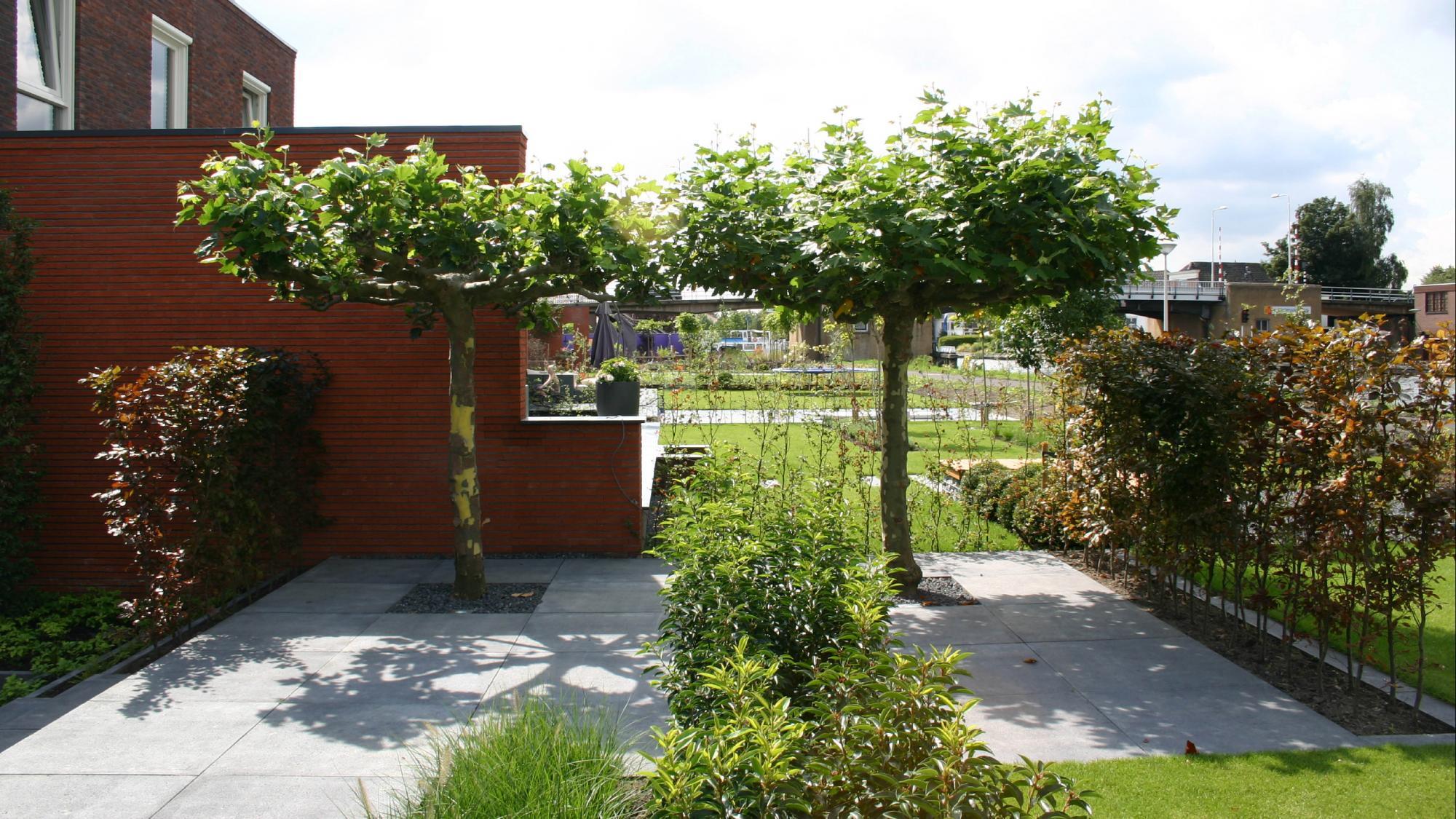 Moderne onderhoudsvriendelijke tuin  - Foto 9