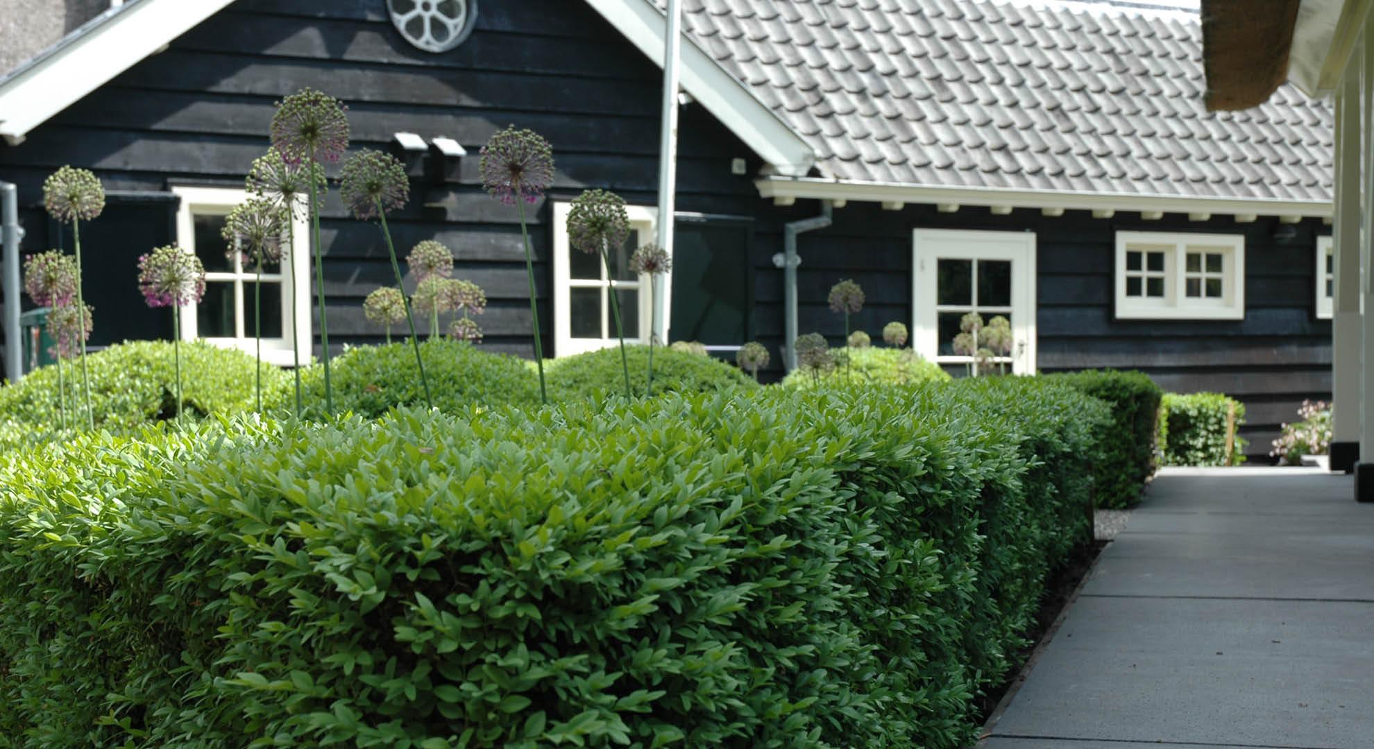 Villatuin aan de plassen - Foto 4