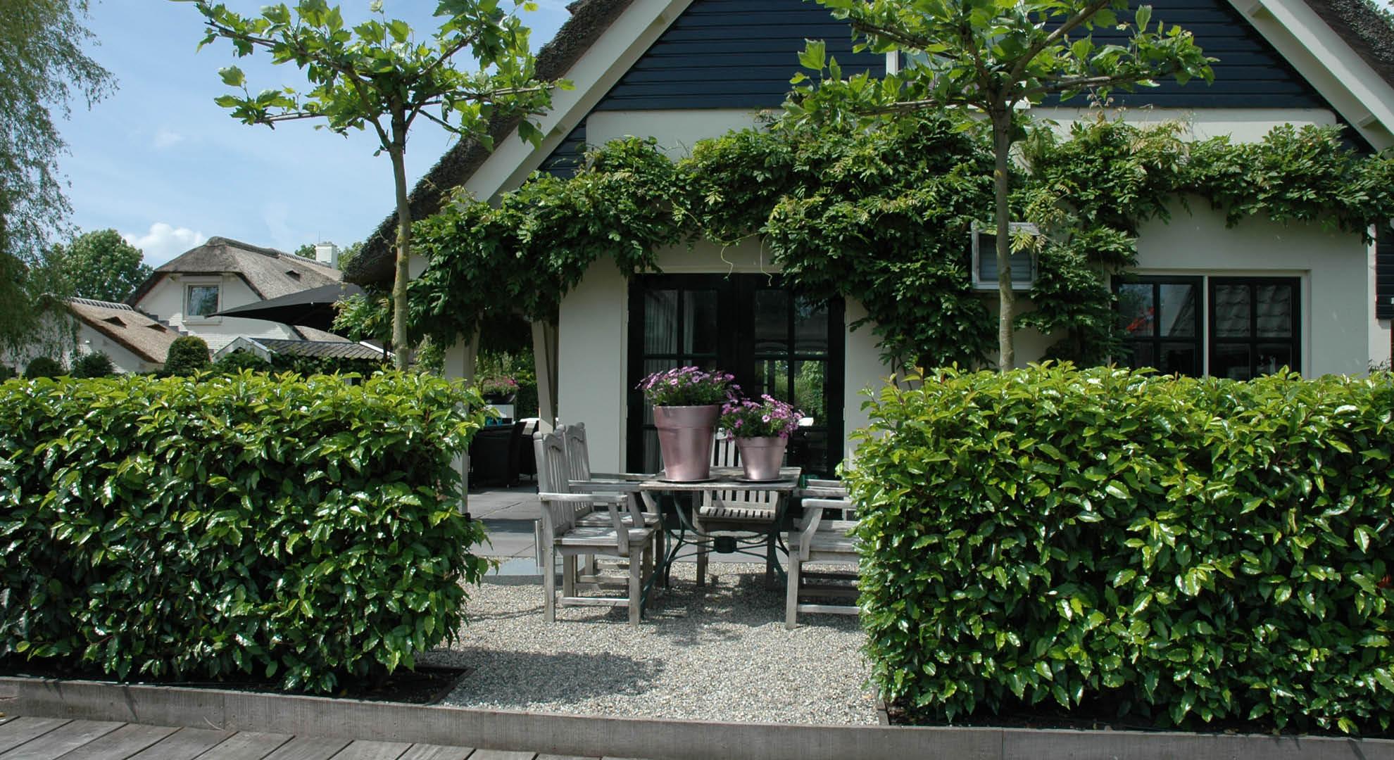 Villatuin aan de plassen - Foto 6